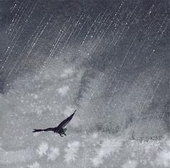 Stormy Darkness